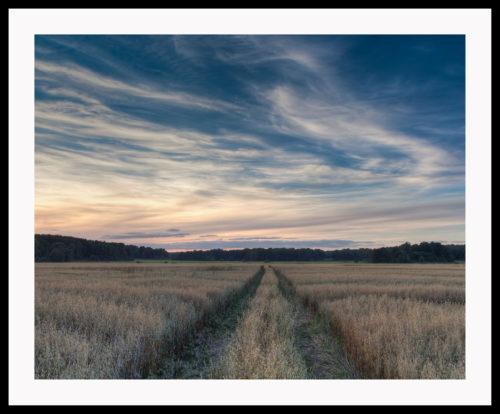 Åker i solnedgång, Rödeby. Fotograf i karlskrona